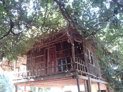 Kampot River Bungalow