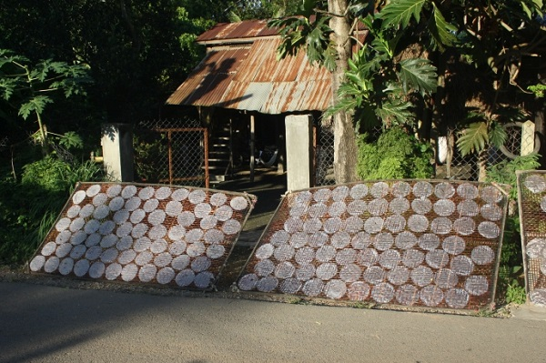 Top 10 bezienswaardigheden Battambang: Loempias maken